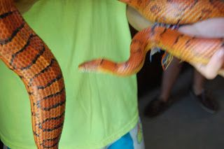TBT: Zac and the Corn Snake