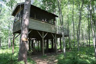 Upper and Lower Treehouses: The Perks of Both