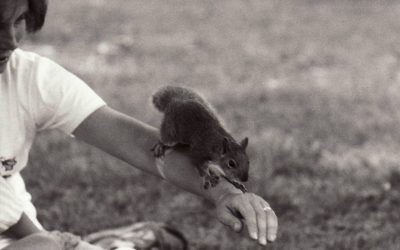 The History of Camp Pets!